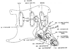 Fender Hot Noiseless Wiring Diagram - Fender Vintage Noiseless Pickups Wiring Diagram Lovely Strat Wiring Diagram Schematic Stratocaster Guitar Culture 4j