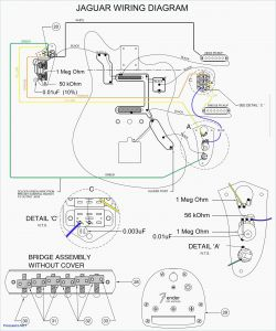 Fender Vintage Noiseless Pickups Wiring Diagram - Guitar Wiring Diagram software Inspirationa Fender Vintage Noiseless Pickups Wiring Diagram 16s