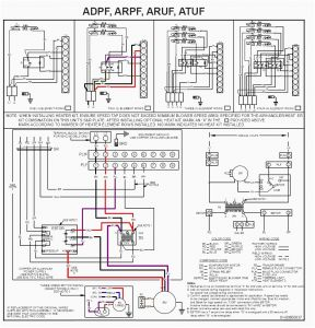 First Company Air Handler Wiring Diagram - First Pany Air Handler Wiring Diagram Unique fortable Coleman Air Handler Wiring Diagram Ideas Electrical 13f