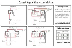 Flex A Lite Electric Fan Wiring Diagram - Flex A Lite Electric Fan Wiring Diagram Mihella Me In for 1l