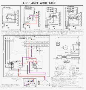 Goodman Furnace Wiring Diagram - Goodman Furnace Wiring Diagram Blurts Me within 9g