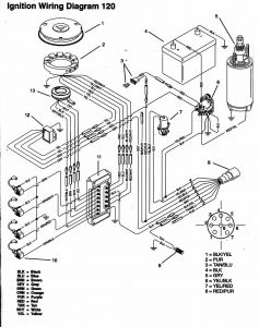 Mercury Trim Motor Wiring Diagram - Tilt and Trim Switch Wiring Diagram Lovely tohatsu 30hp Wiring Diagram Free Wiring Diagrams Schematics 19s