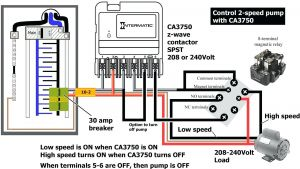Pentair 2 Speed Pump Wiring Diagram - Wiring Diagram Pool Pump for 230 Volt Circuit Beautiful Afif within Sta Rite 17a