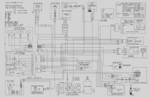 Polaris Rzr Wiring Diagram - Polaris Ranger Ignition Wiring Diagram Awesome 2010 Polaris Ranger 800 Xp Wiring Diagram 2001 Ignition 8p