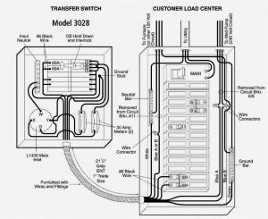 Reliance Generator Transfer Switch Wiring Diagram - Reliance Generator Transfer Switch Wiring Diagram Fresh Generator Transfer Switch Wiring Diagram Manual Gansoukin Inside 16o