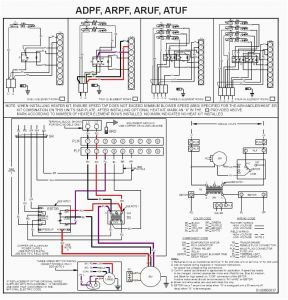 Ruud Wiring Diagram - Goodman Air Handler Wiring Diagram Electric Furnace at Heat Pump Rh Deconstructmyhouse org 12b