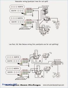 Sg Guitar Wiring Diagram - Wiring Diagram for Sg Guitar Best Gibson Sg Double Neck Wiring Diagram New Wiring Diagrams for 9a