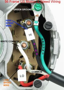 Waterway Executive 56 Wiring Diagram - Waterway Executive 56 Pump Wiring Diagram Download 13 Waterway Spa Pump 1 I Download Wiring Diagram Detail Name Waterway Executive 56 7l