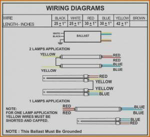 Wh5 120 L Wiring Diagram - Fulham Workhorse Wiring Diagram with Basic Pictures 2 Diagrams Fine Rh Chromatex Me 12 Vdc Wiring 17l